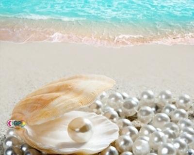 Speciaal luchtje voor gietzeep Pearly geurolie geschikt voor smelt zeep