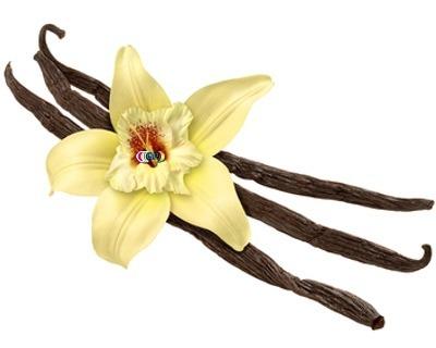 Speciaal luchtje voor gietzeep vanille geurolie geschikt voor smelt zeep